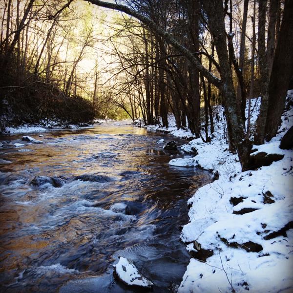 Snowy Tremont