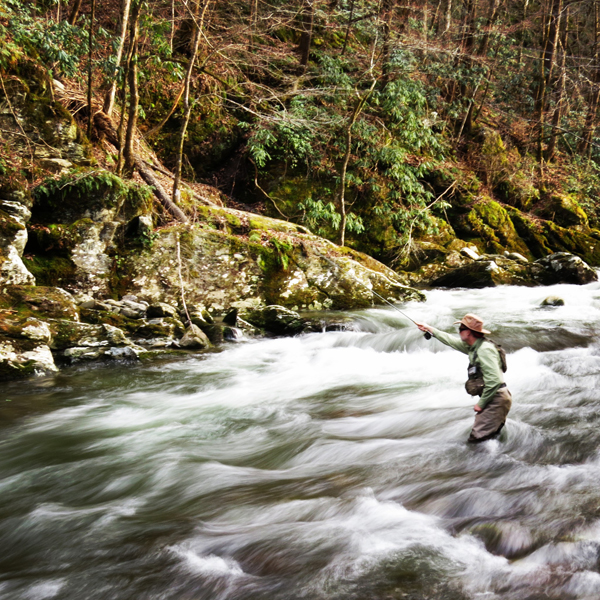 Fly fisher at Tremont in the Smokies