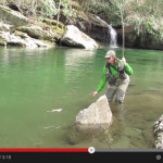 Video: Fly Fishing the Blue Quill Hatch in the Great Smoky Mountains