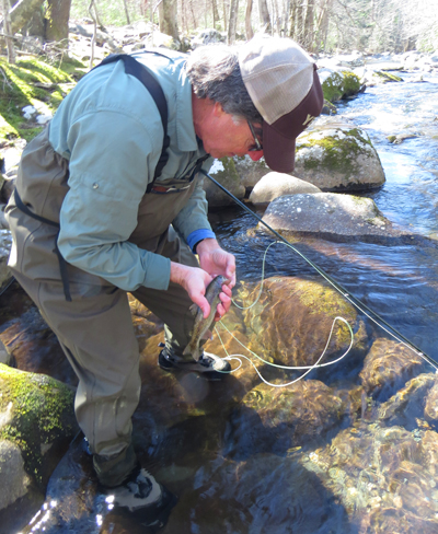 Jerry Eyler releases a nice rainbow trout on LIttle River