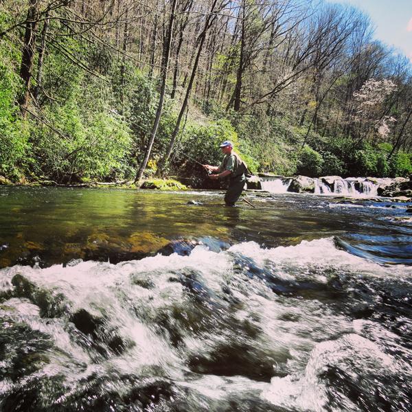 Sunny Hazel Creek Nymphing