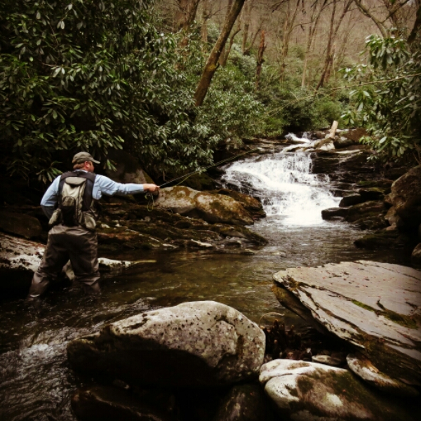 fishing for smoky mountain brook trout