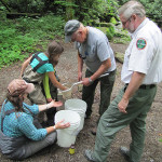 Smoky Mountain Brook Trout And the Next Generation