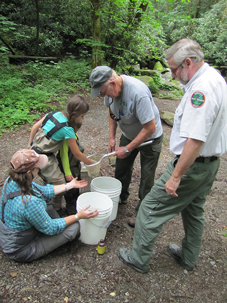 Charity & the kids counting the fish with retired park biologist Steve Moore and Tennesse cold water biologist Rick Bivens