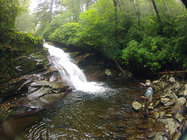 A damp, misty day of fishing high in the Smokies