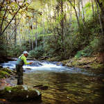 Classic Fall Fishing in the Smokies