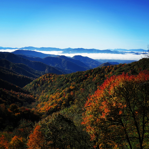 The view toward Bryson City, NC  from Deep Creek Overlook on Newfound Gap Road in the Smokies