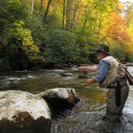 The Peak of Fall Fly Fishing in the Smokies