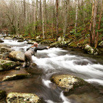 2015 Begins with True Winter Fishing in East Tennessee