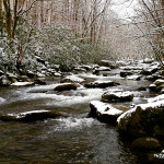 Winter Weather & Fishing Across East Tennessee