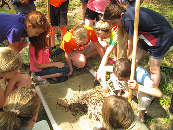 The kids identify numerous aquatic insects collected with a seine net