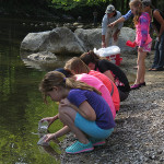 Trout In The Classroom takes Kids to the Creek