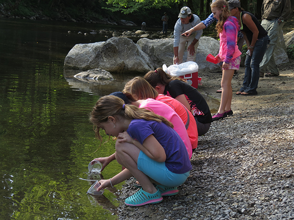 Each child had a cup with 3-5 small trout to release into the Little River in Townsend