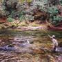 Using the Tenkara rod on Little River