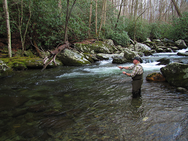 Fly fishing the smokies and east tennessee in 2016 r and for Tennessee trout fishing