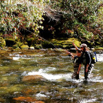Tough Winter for Fly Fishing in the Southeast