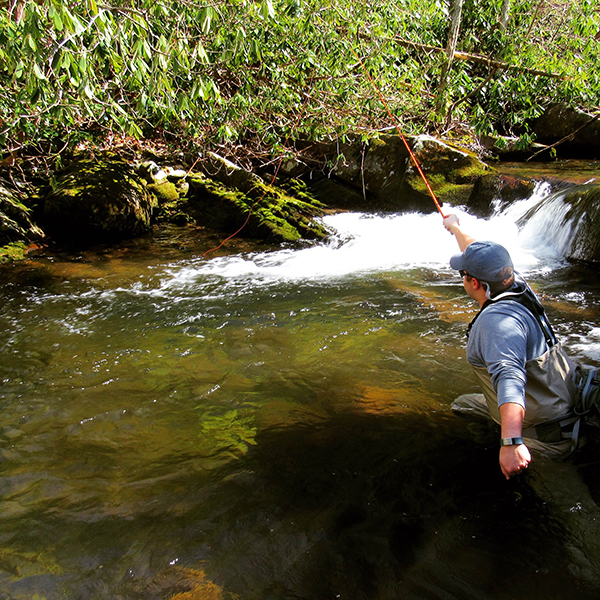 An angler using Tenkara to cast to native brook trout in the Smokies