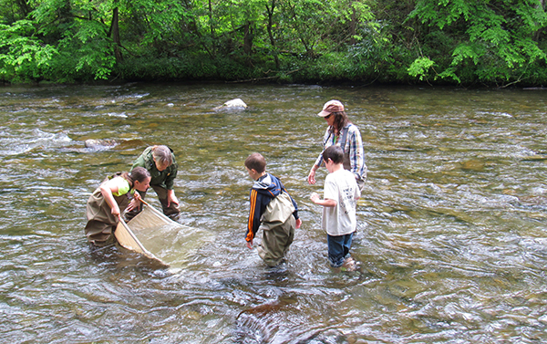 Charity assists National Park entomologist Becky Nichols seine aquatic insects with the kids