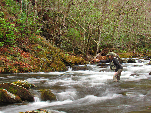 Charity works some pocket water near Tremont in the Smokies