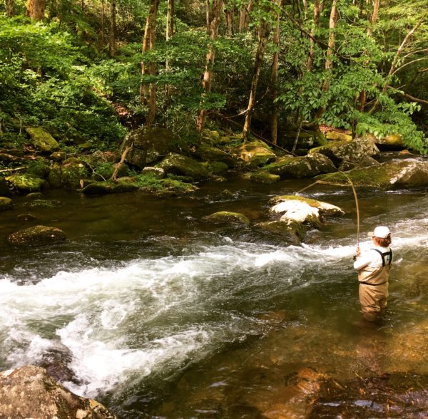Spring day fishing the Smokies
