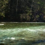Icy Weekend on Smoky Mountain Streams