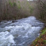Quick Pic: High Water in the Smokies