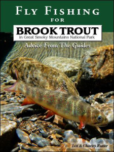 brook-trout-cover