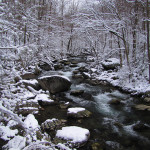 More Snow in the Smoky Mountains