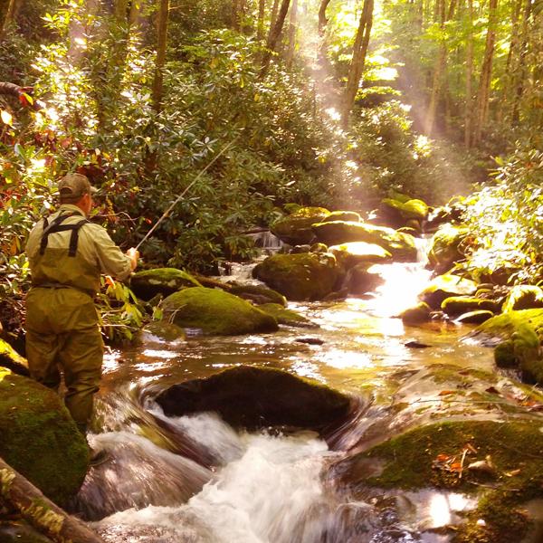 Beams-of-light-on-brookie-stream