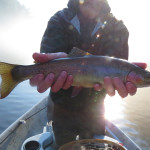 Winter Fly Fishing Forecast for the Smoky Mountains and East Tennessee