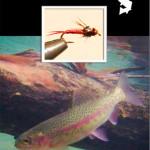 Fly of the Month Download – Copper John