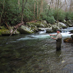 Fly Fishing The Smokies and East Tennessee in 2016